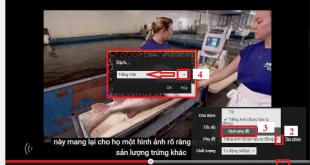 Phụ đề tiếng Việt cho video trên Youtube
