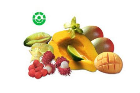 An toàn thực phẩm chiếu xạ