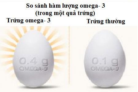 Trứng được làm giàu axit béo không bão hoà