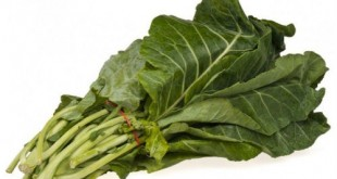 10 thực phẩm nguồn gốc thực vật tốt nhất cho phổi