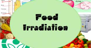 Các loại thực phẩm được phép chiếu xạ