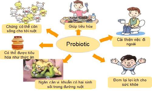 Thực phẩm cho sức khỏe: Hỗ trợ tăng cường miễn dịch