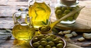 Quy trình sản xuất dầu oliu