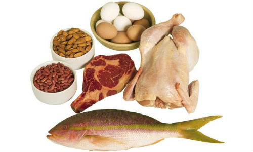 Thịt, thịt gia cầm, cá, trứng, các loại đậu và các loại hạt