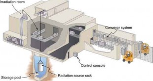 irradiation source