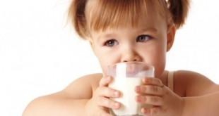 Khi nào nên cho trẻ uống sữa bò
