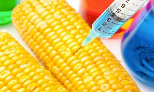 Phương pháp xác định thực phẩm biến đổi gen