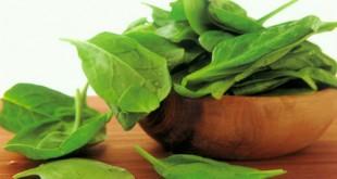 Phương pháp xử lý an toàn cho xà lách búp Mỹ và cải bó xôi