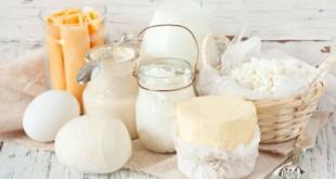 Sữa, pho mát và các sản phẩm từ sữa