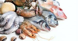 Những điều bạn cần biết về thủy ngân trong cá và hải sản có vỏ