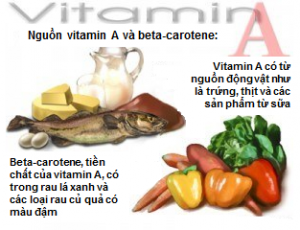 Nguồn cung cấp vitamin A
