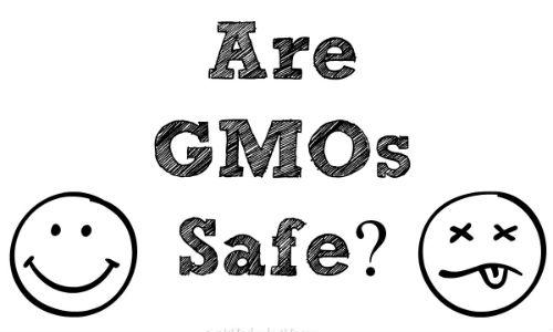 GMO-safe