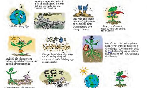 Lợi ích của việc tái tạo nguồn cacbon cho đất