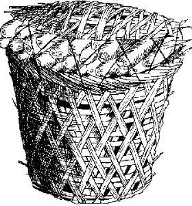 Giỏ làm bằng sợi thực vật
