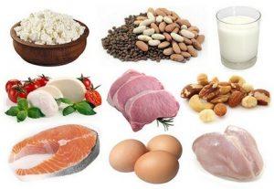 Nguồn protein từ thực phẩm