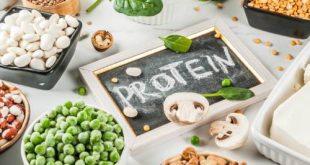 Protein trong thai kì